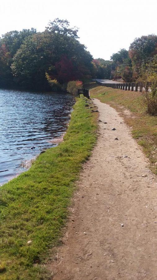 Hiking at Dunn Park