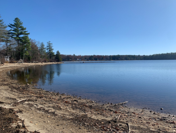 Lower Naukeag Lake in Ashburnham, MA after it's been drained for the winter.