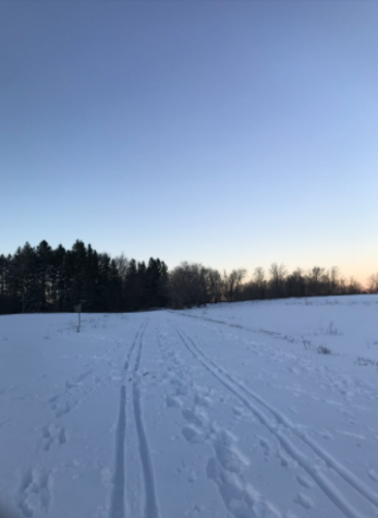 Cross Country ski trails at High Ridge Wildlife Management Area.