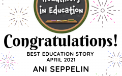 Ani Seppelin wins Journalism Award